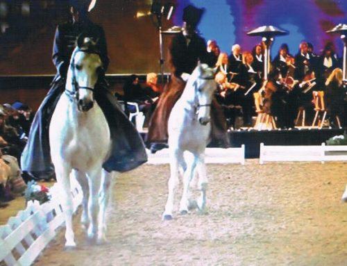 J.S.Bach: Weihnachtsoratorium mit barocken Pferden